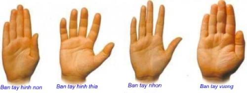 Xem bói tay: Hình dáng bàn tay nói lên điều gì ?