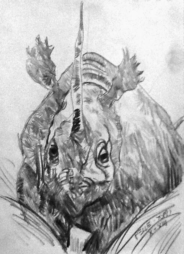 Rhino Pelle-Toppi (chiamami Gennaro)