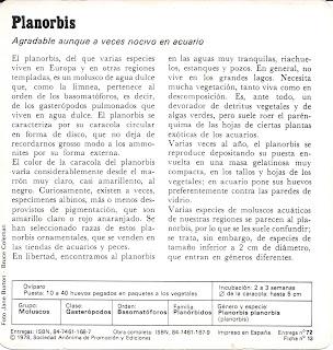 Fichas Safari Club, caracteristicas de el Planorbis