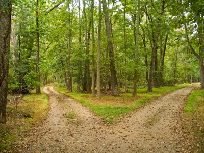the road not taken by robert frost critical analysis