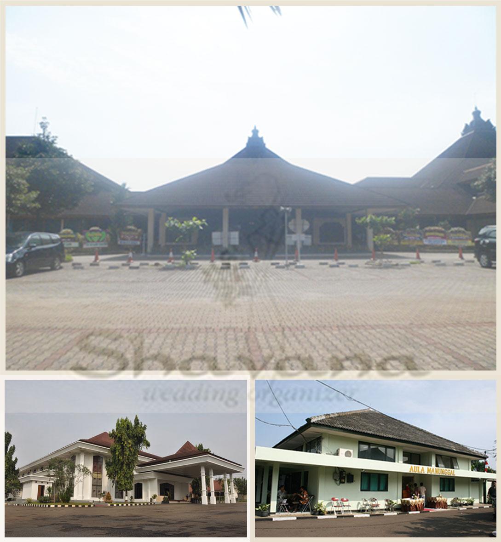 shavana wedding organizer harga gedung pernikahan 2012