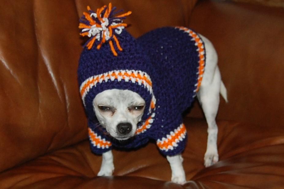 Free Crochet Pattern Dog Hoodie : Posh Pooch Designs Dog Clothes: Crochet Pattern - Sports ...