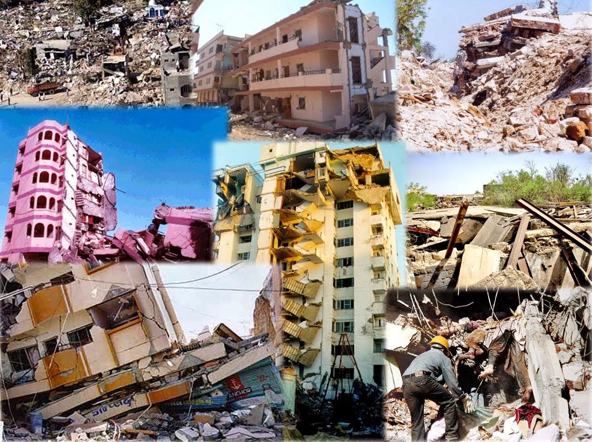 2010 haiti earthquake case study