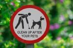 Allesly Park Clean Up