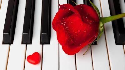 Piano con una rosa roja