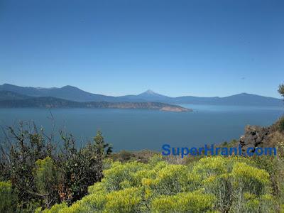 Езерото Кламат  добив на АФА от АкваСорс