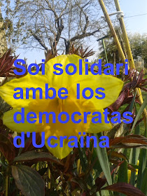 Solidaritat ambe los pòbles d'Ucraïna