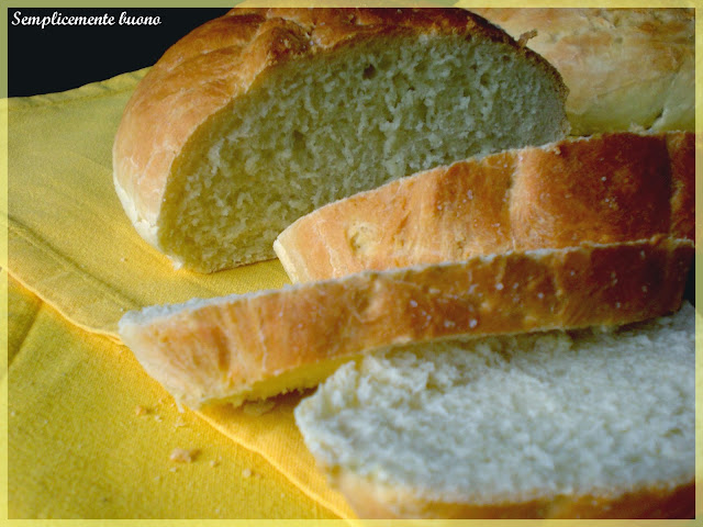 tartaruga di pane