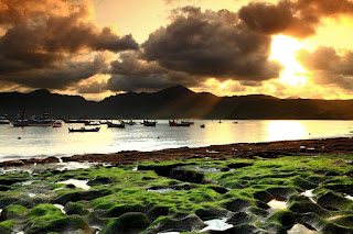 pantai popoh tulung agung, popoh beach, wisata jawa timur, rute pantai