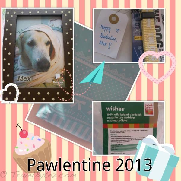 Petopia's Pawlentine