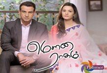 Mouna Raagam Polimer TV Serial