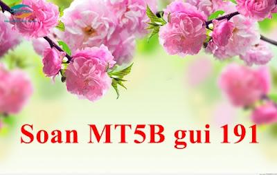 Mua thêm 2,6GB với gói cước MT5B của Viettel.