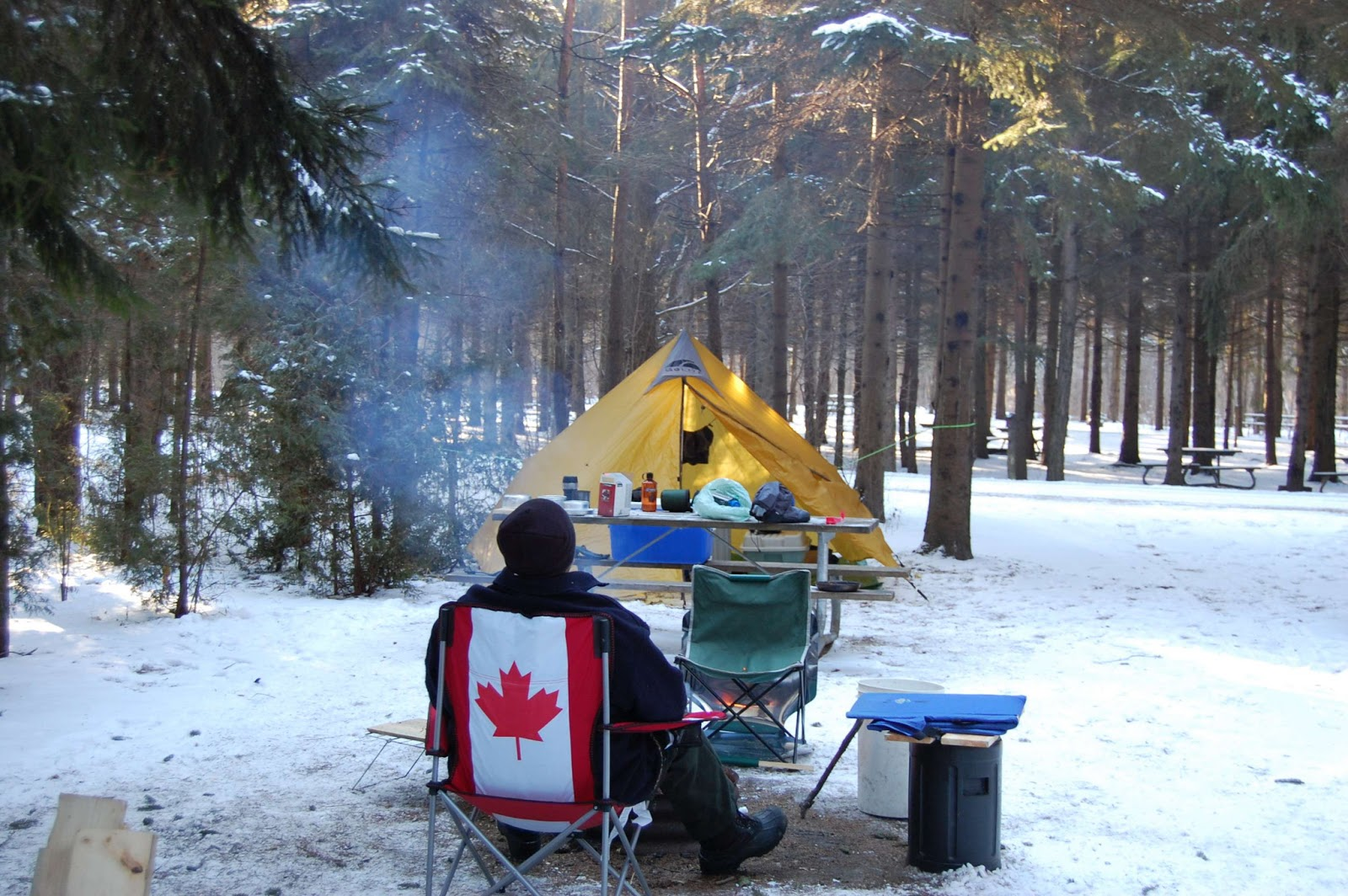 Hamilton Conservation: Winter brings a chance to ...