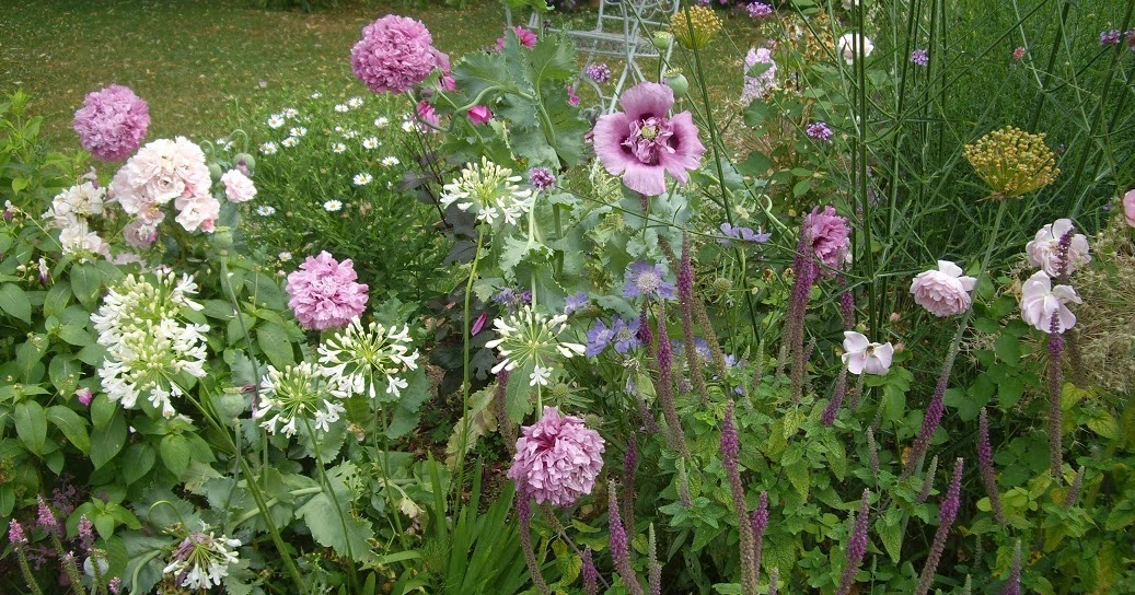 Derri re les murs de mon jardin r trospective de juillet - Derriere les murs de mon jardin ...
