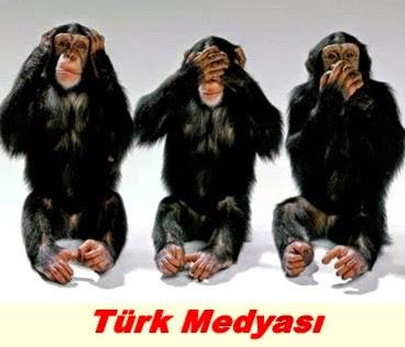 turk-medyasi-uc-maymun
