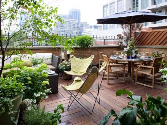 Una terraza llena de plantas - Plantas terraza ...
