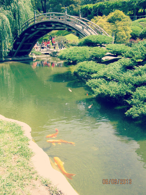 Huntington Gardens- Moon Bridge and Koi Pond