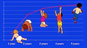 مراحل نمو  علم نفس