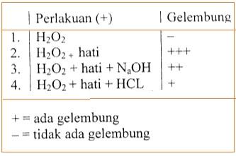 Jurnal kerja enzim