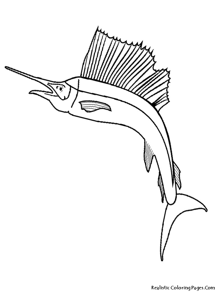 Free Coloring Pages Of Drawing Of Fish