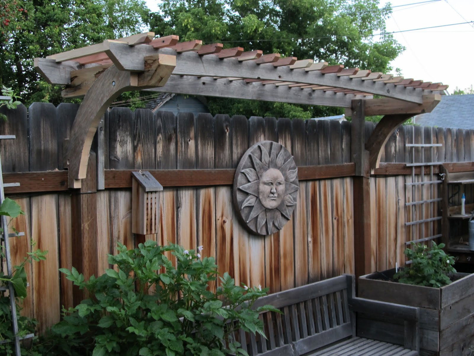 New Grape Arbor
