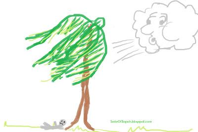 nazar_pokok_kelapa