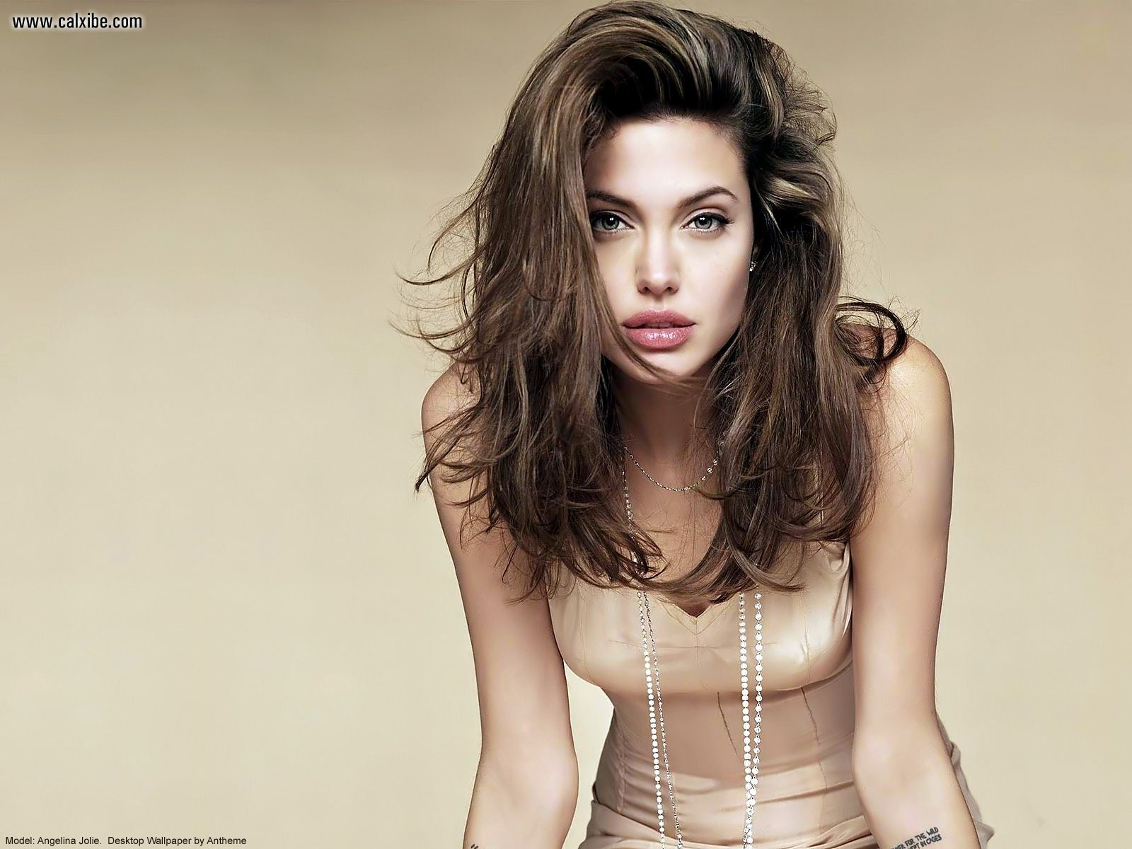 Angelina Jolie wall anth41 free no signup adult chat for mobile. Published on 25.03.2012 by At malhamp, ...