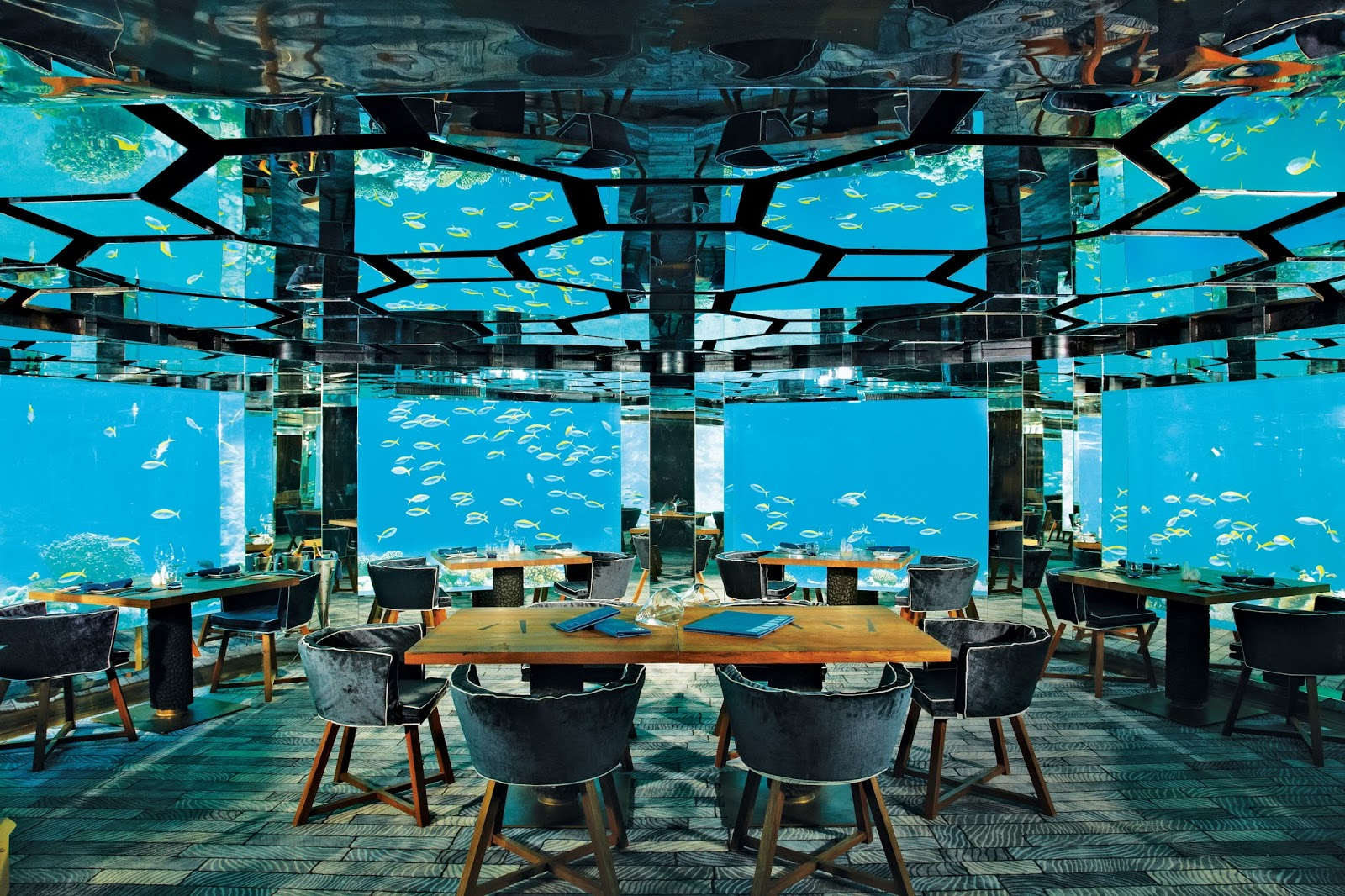 Maldives holiday tour huffpost cites ithaa undersea for Ithaa restaurant maldives