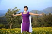 Hari priya photo shoot among yellow folwers-thumbnail-21