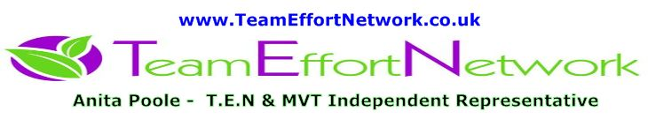 Team Effort Network with Anita Poole