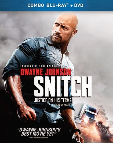Snitch 2013 Dual Audio Hindi Eng BRRip 480p 300mb