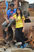 Ketugadu Movie photos gallery-thumbnail-10