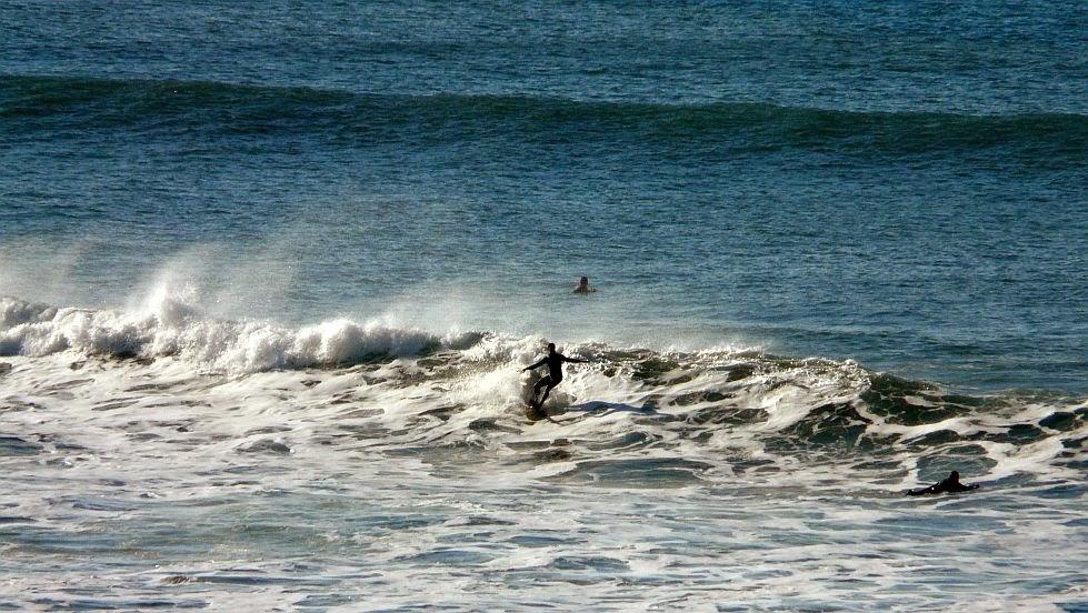 cutback surf sopela