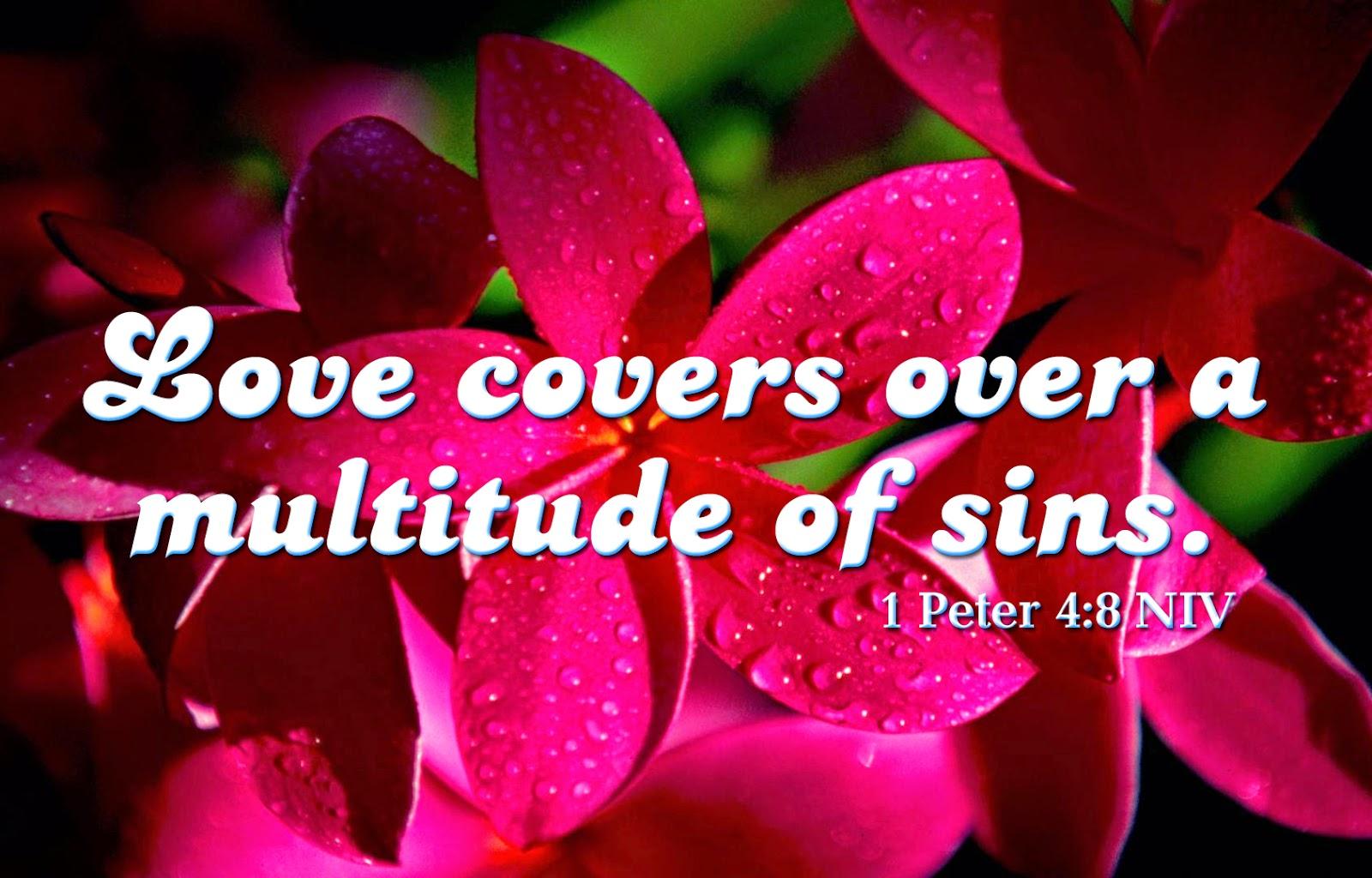 Bible Beautiful Words Beautiful Love Bible Verse