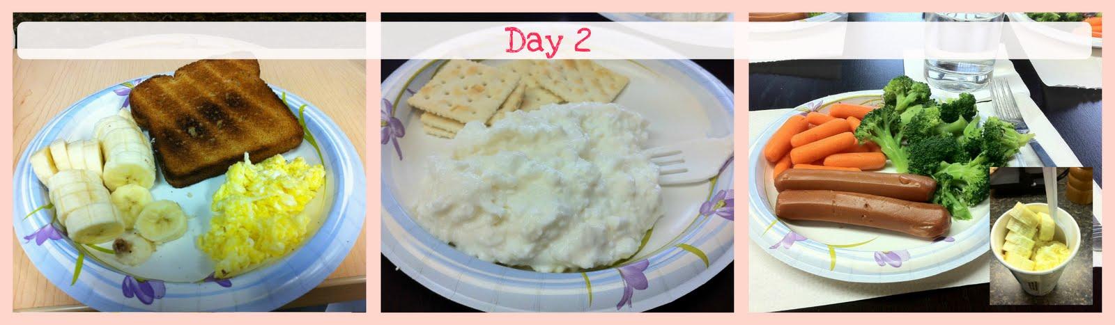 Day Diet