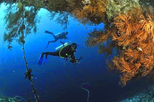 Keindahan Alam Bawah Laut Pulau Kapoposang