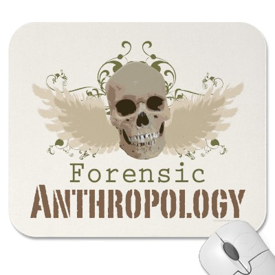 what a forensic anthropologist would examine when attempting to identify human remains Interpreters of the dead: forensic  interpreters of the dead: forensic knowledge, human remains and the  the forensic anthropologist famed for his identi.