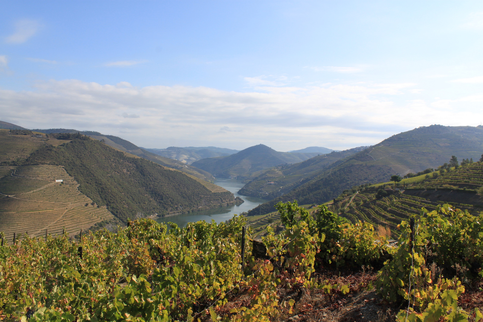 Vallée du Douro