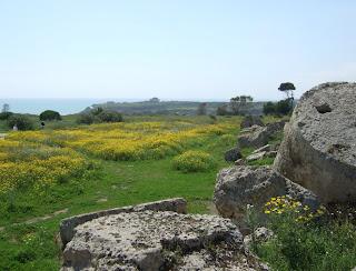 Blick von den Resten des Tempels G auf die Akropolis von Selinunt