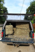 Truck filled with bales of hay