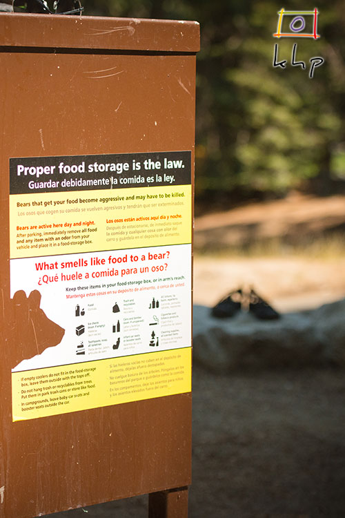 All food and food-like smelly items should be kept in the bear boxes.