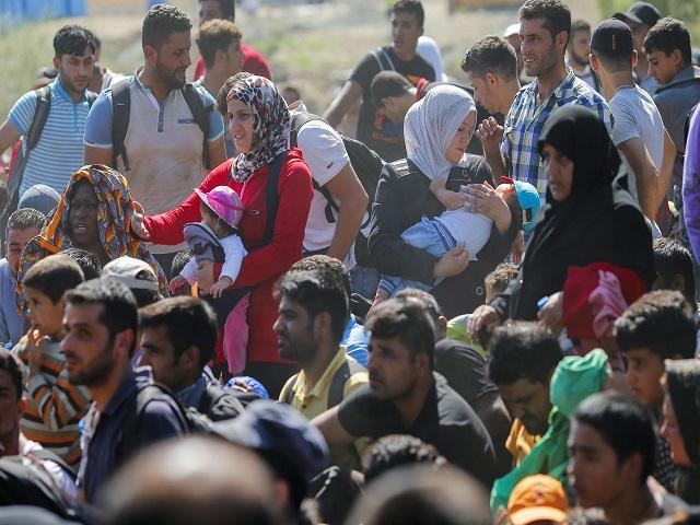 Multimillonario Egipcio Quiere Comprar Isla Para Acoger Refugiados