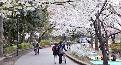 Tempat Yang Sebaiknya Dihindari Ketika Liburan Ke Jepang