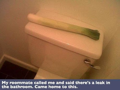 Funny Toilet Leak Leek Punology Picture
