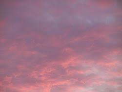 Fleuvero en rose