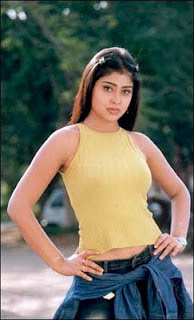 shreya in tight top dress