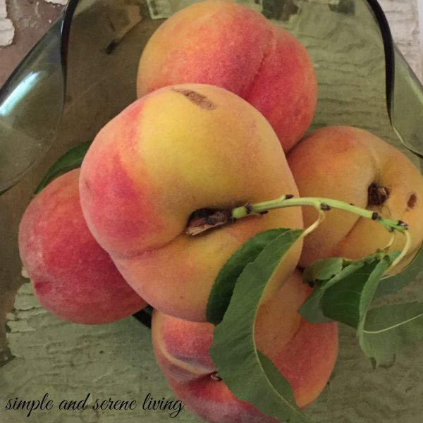 fresh picked summer peaches fruit produce summer