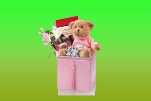 mawar_valentine20802