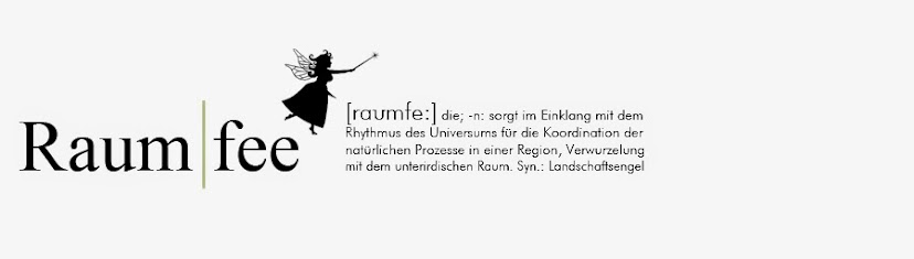 Die Raumfee