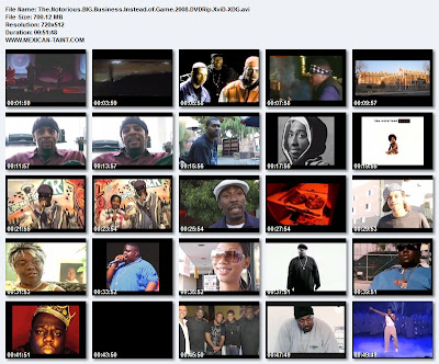 The.Notorious.BIG.Business.Instead.of.Game.2008.DVDRip.XviD-XDG